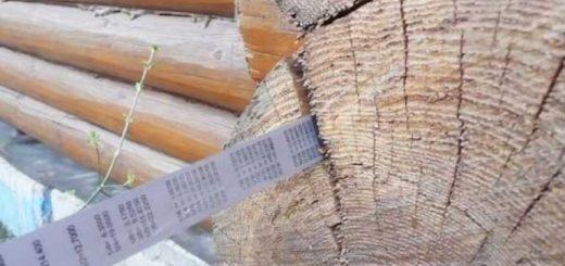 Строительная экспертиза дефектов деревянных конструкций