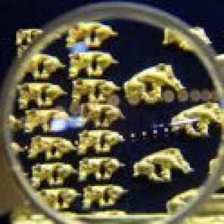 Проект разработок золота в Амурском крае одобрен