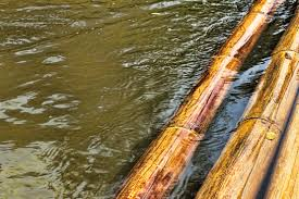 Экспертиза  влажности древесины
